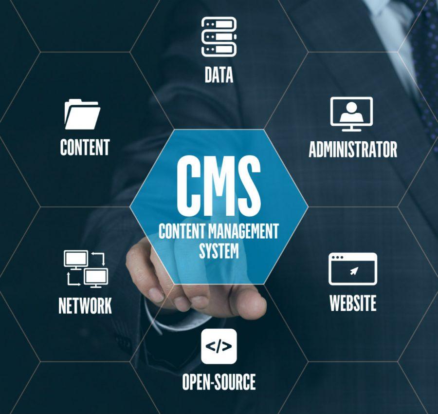 cms entwickler muenchen